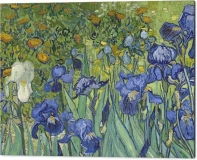 13-irises-vincent-van-gogh-canvas-print
