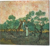 the-olive-pickers-vincent-van-gogh-canvas-print