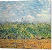 wheatfield-with-lark-vincent-van-gogh-canvas-print